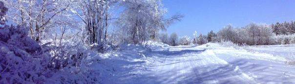 Běžky-Telčsko | Běžecké tratě na Telčsku a Javořicku